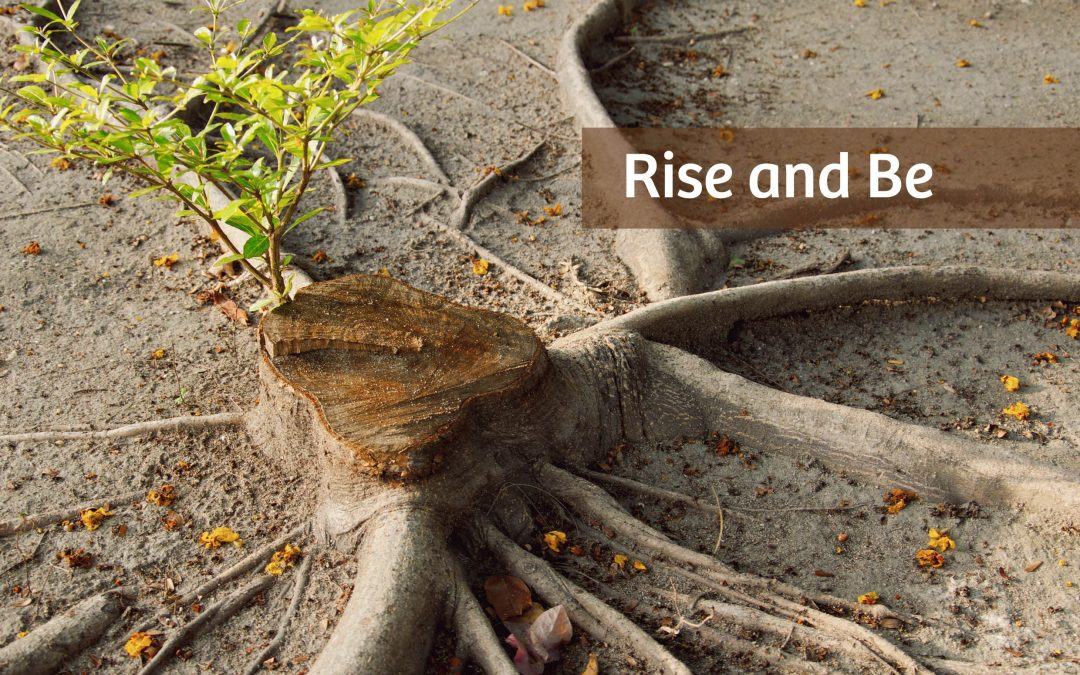 Rise and Be