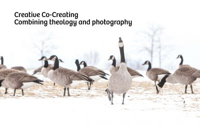 Creative Co-Creating: Combining theology and photography
