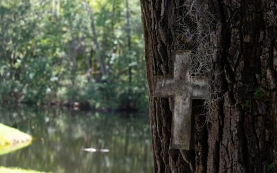 Christianity, Nature & Mental Health: Possibilities and Pitfalls